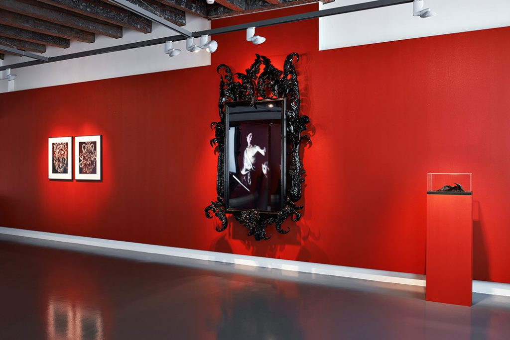 Mat Collishaw, Black Mirror, Hydrus. Photo © Daniela Droz & Tonatiuh Ambrosetti